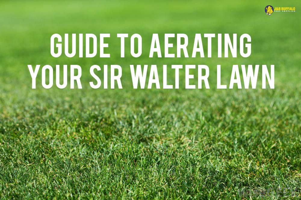 Sir Walter Aeration
