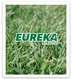 eureka turf