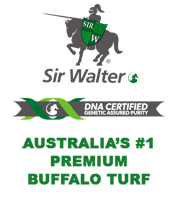 Sir Walter Buffalo Turf - J & B Buffalo Turf Supplies