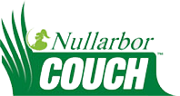 nullarbor-couch-turf